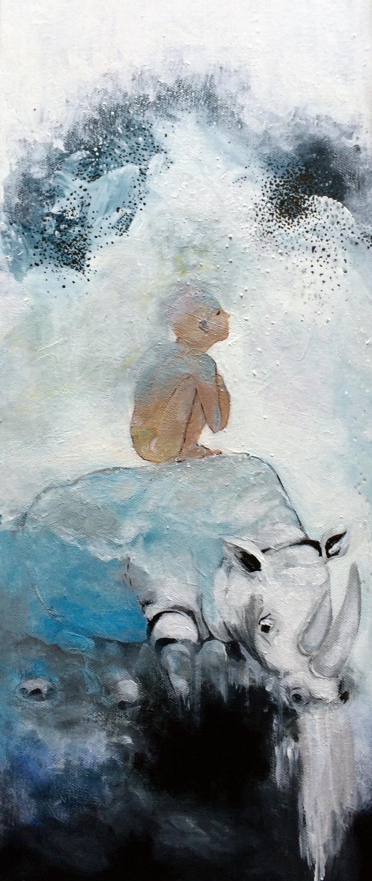 menino sobre rino